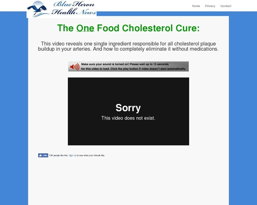The Oxidized Cholesterol Strategy -One Food Cholesterol Cure