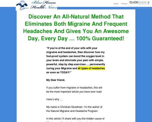 The Migraine And Headache Program! – Blue Heron Health News